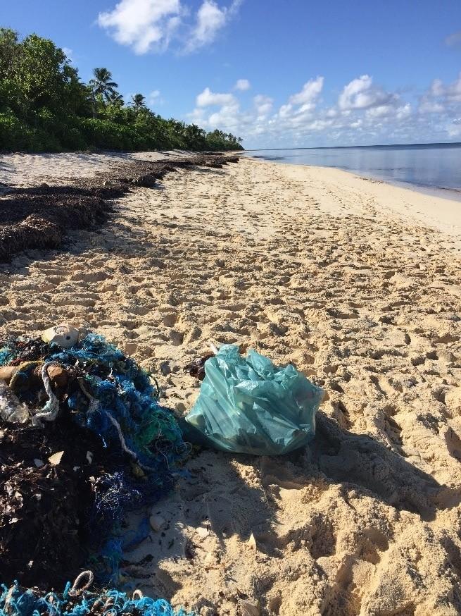 Fishing gear and plastic waste litter Farqhuar Island, Seychelles